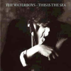 The Waterboys - This Is The Sea (Remastered)